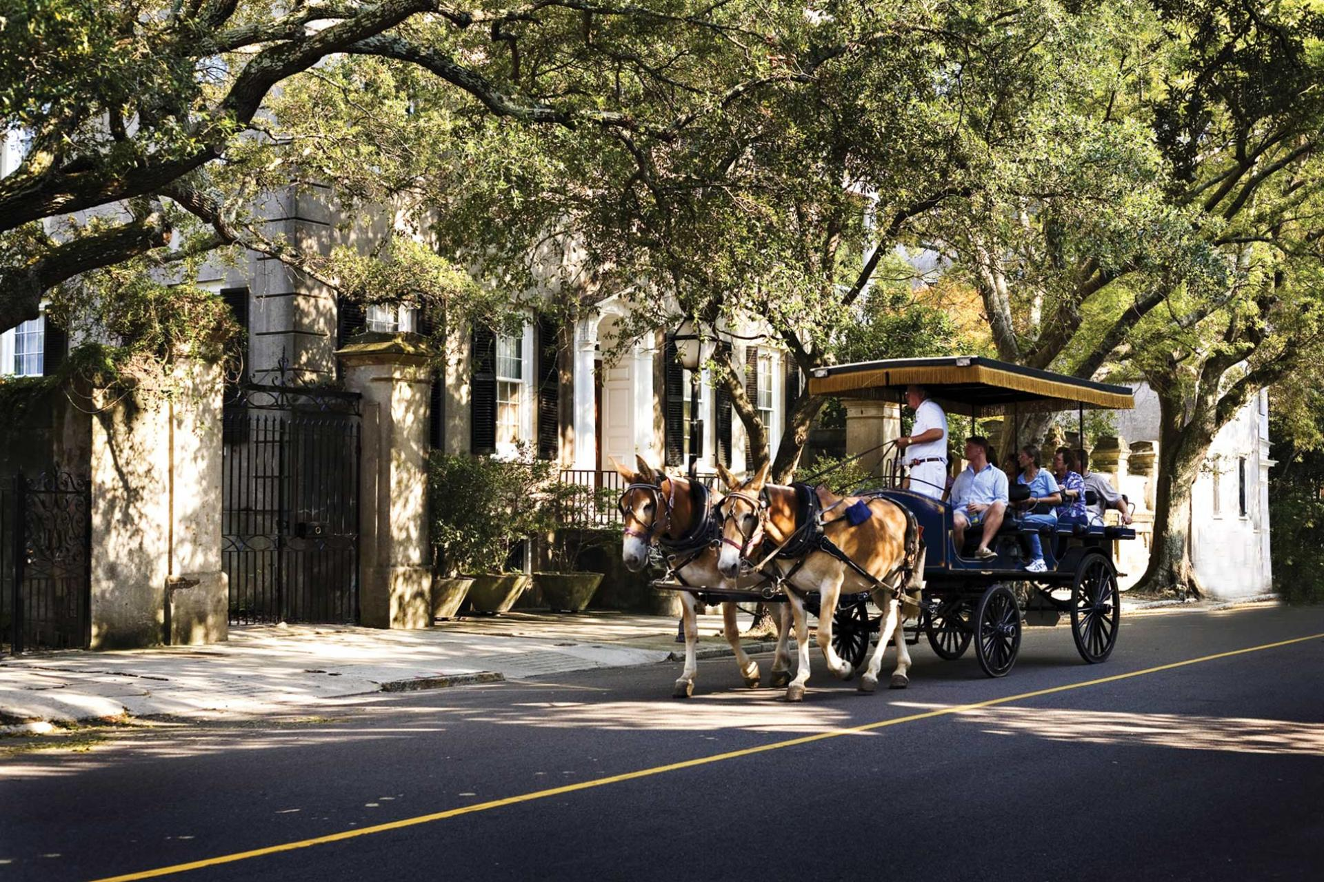 historic carriage tour